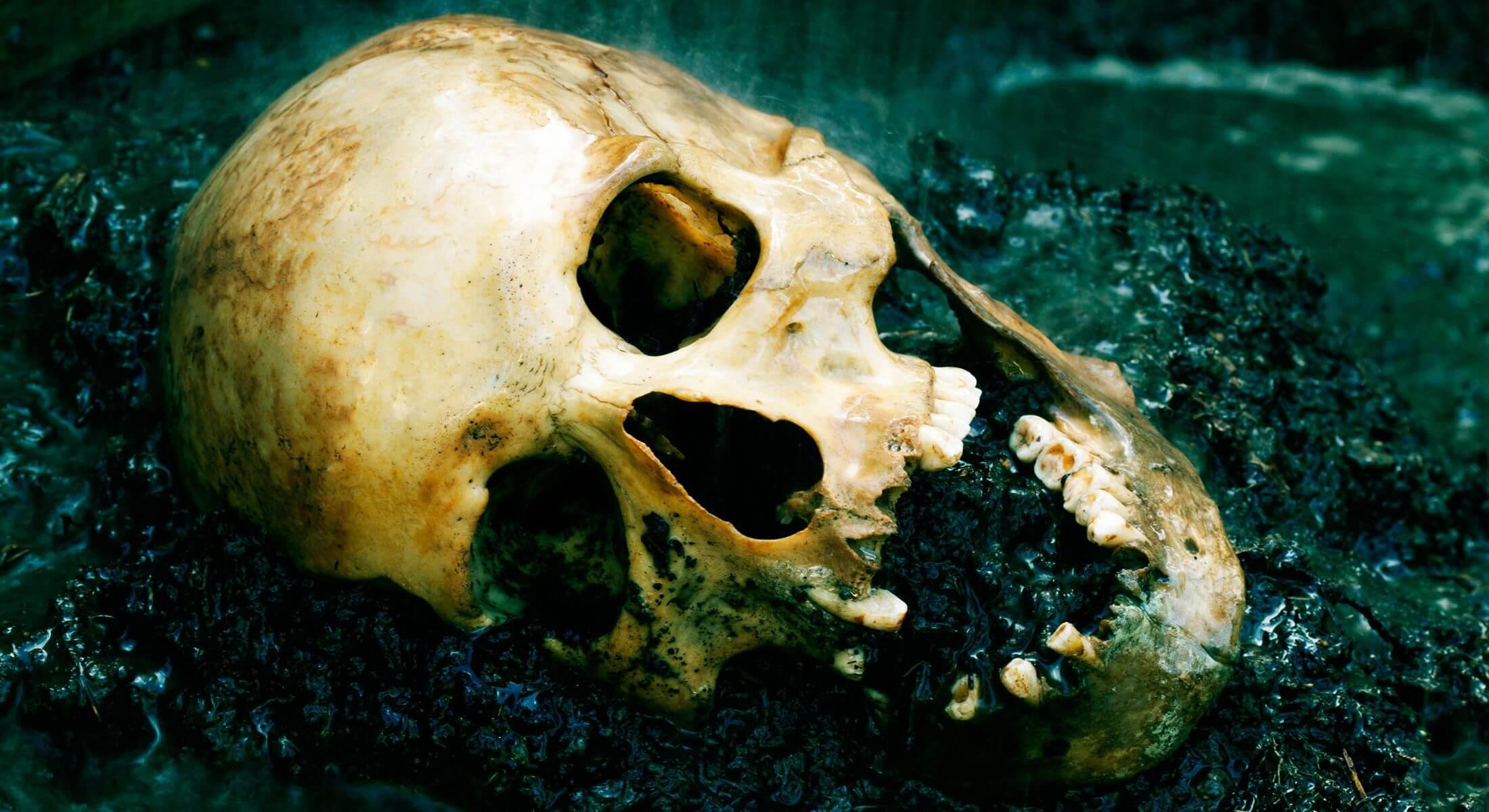 Real human skull figured as crime scene
