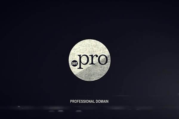 Top Level Domain .PRO